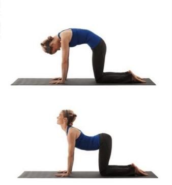 stretching yoga physio
